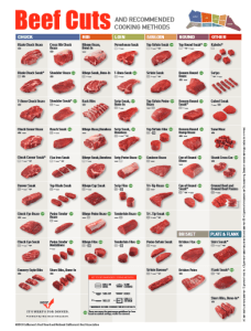 Beef Steer Diagram What Everybody Ought To Know About Beef Cuts Clover