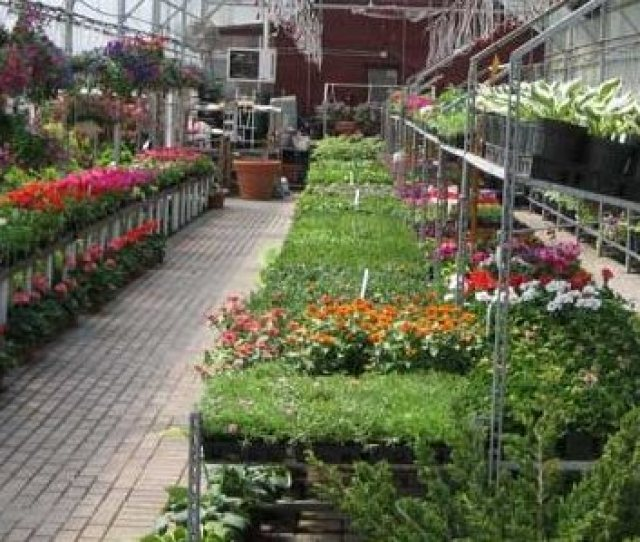 Tucked Away Like A Hidden Jewel In The Town Of Brighton The Clover Nursery Garden Center Contains Four Acres Of Hand Selected Growth
