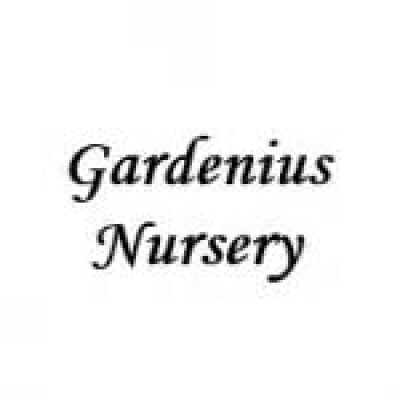 GARDENIUS NURSERY