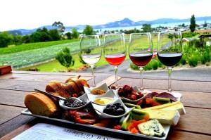 vino neozelandese degustazione