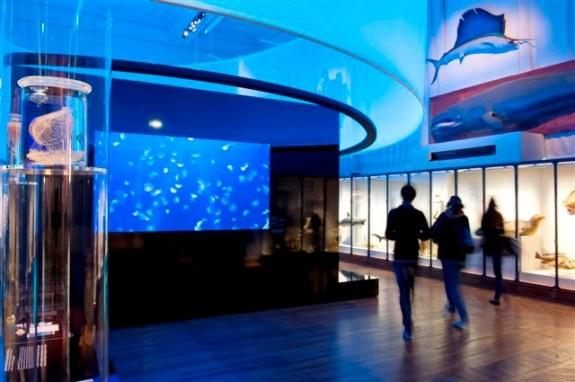 Musée océanographique monaco general