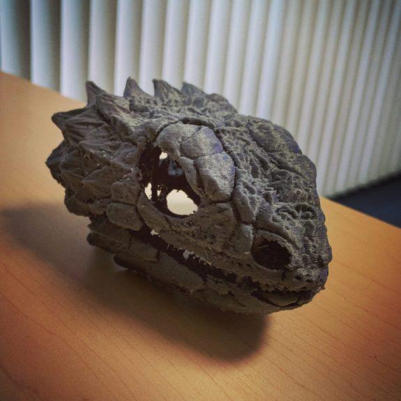 3-D printed skull of giant girdled lizard, Smaug giganteus.
