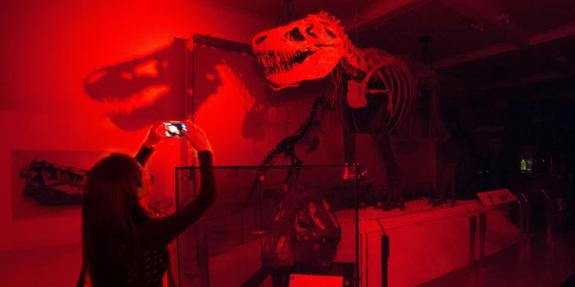 amhn night t-rex_ms_140802_8853-edit2_dynamic_lead_slide