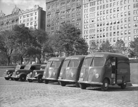 amnh 1941