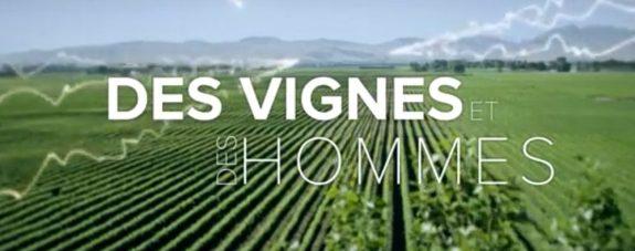 arte cite vin des-vignes-et-des-hommes-arte-1000x395