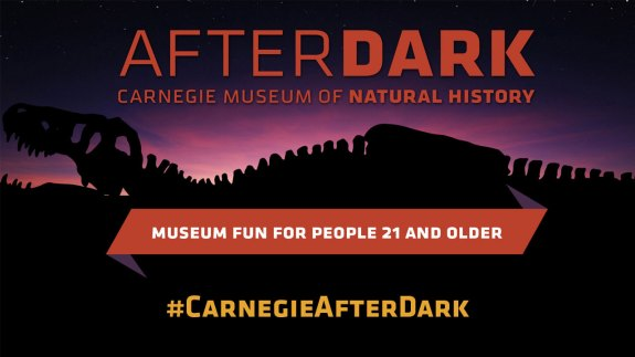 carnegie museum after dark banner
