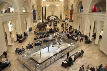 field museum inside