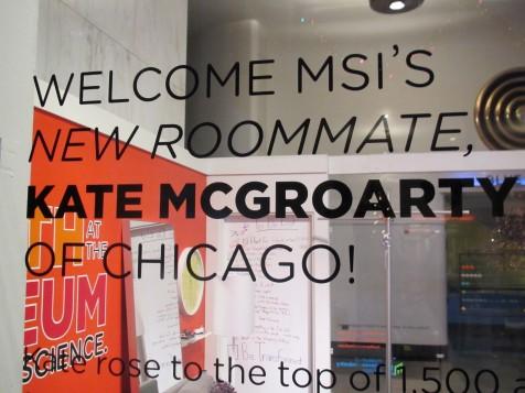 museum-chicago-1-img_1923-e1290104394690