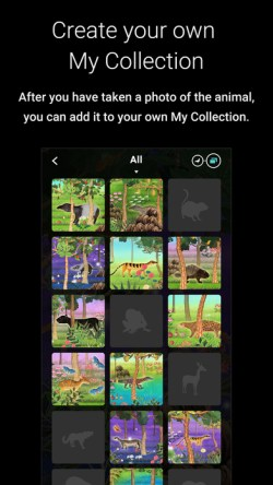 national museum singapore story of forest app 3