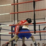 boxing club scarborough ontario