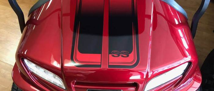 2019 Onward - SS Decals-lr