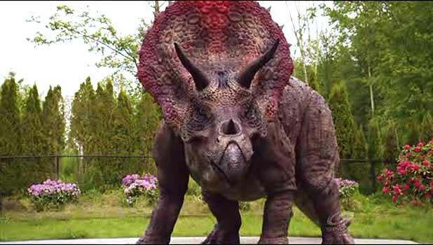 Triceratops  Primeval