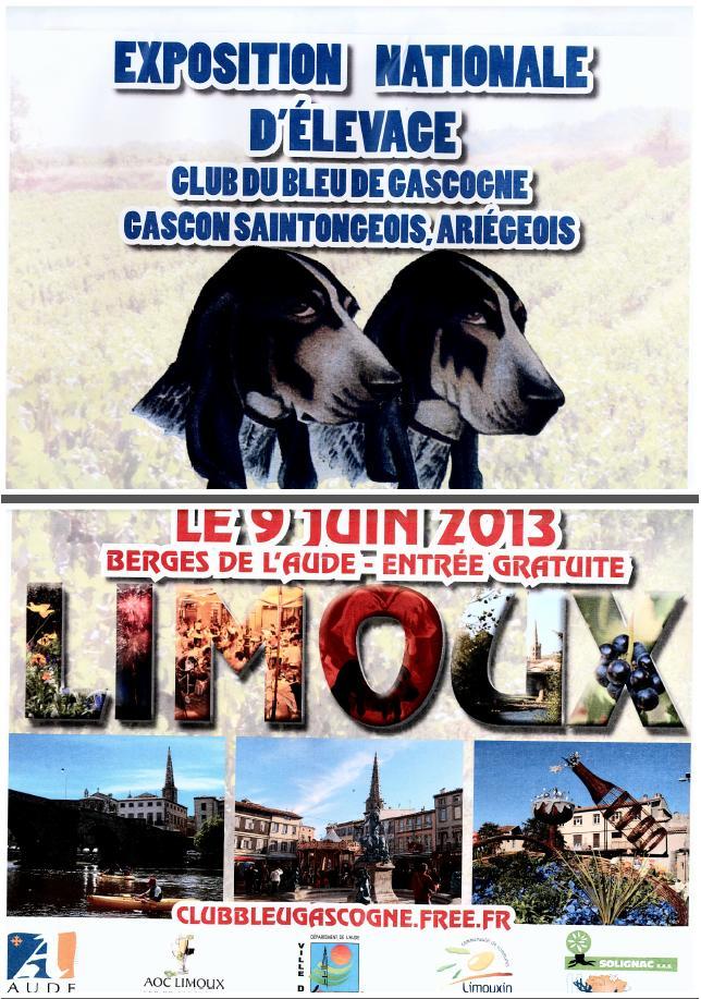 affiche journée du bleu de Gascogne