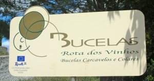 bucelas-wine-route-c2a9louise-hurren