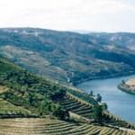 porto_vale_do_douro