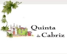 20100129151031_quinta_cabriz