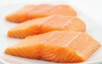 peixes gordos1