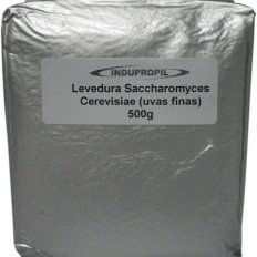 Saccharomyces cerevisae4