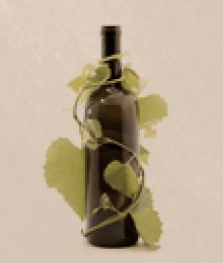 sobre_vinhos
