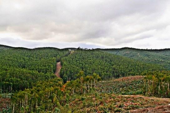 Ultra-Trail-Serra-DOssa