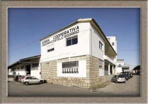 edificio4-500x500