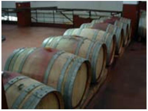 Os vinhos velhos da Adega Cooperativa de Valpaços são estagiados em barricas de madeira de carvalho novo.