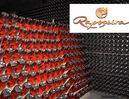 O prestígio dos vinhos da região de Lamego remonta ao século XVI e foi definitivamente consagrado com a produção dos espumantes Raposeira, empresa fundada há mais de 100 anos.