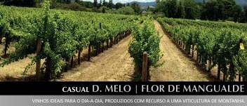 vinhos_casual