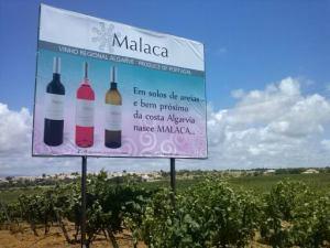 VINHOS MALACA