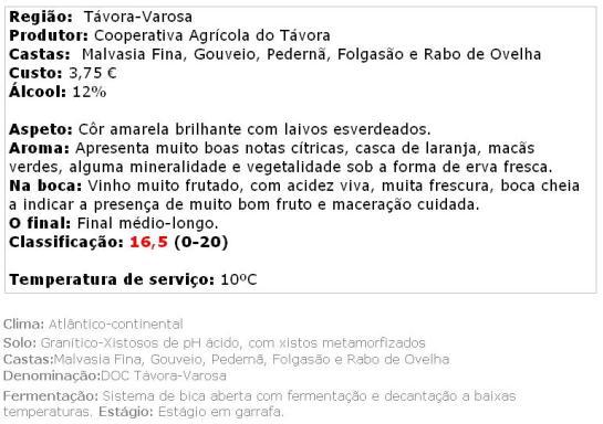 apreciacao Terras do Demo Branco Seco 2013