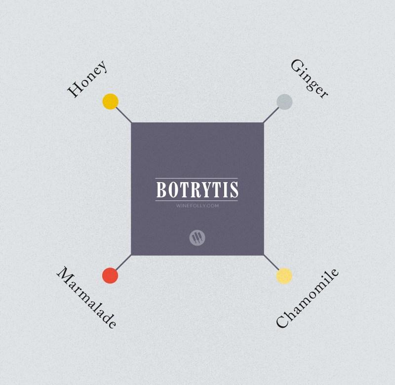 Botrytis