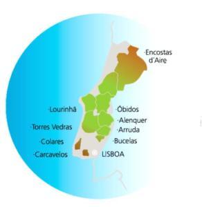 OS 9 DOCS (Denominação de Origem Controlada) da Região de Vinhos de Lisboa