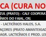 VACA (CURA NORMAL)