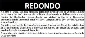 4 - REDONDO