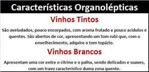 DO PORTIMÃO Características Organolépticas