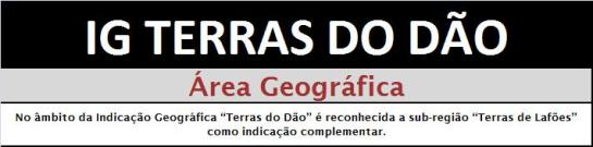 IG TD AG