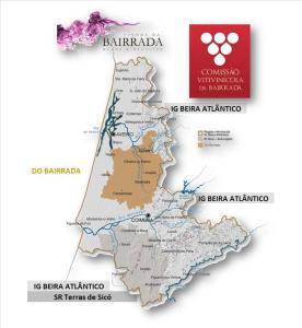 BAIRRADA: IG BEIRA ATLÂNTICO E DOC BAIRRADA
