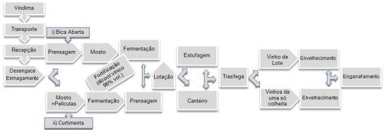 Processo de Vinificação esquematizado