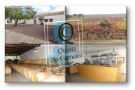 LOGO QCARNEIRO1