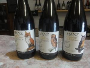 MANZ23