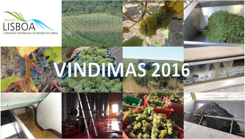 logo-vindimas-cvr-lisboa-2016