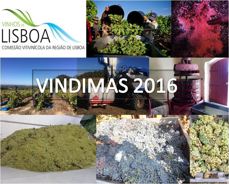 logo-vindimas-rvlisboa-2a-2016