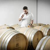 morais-rocha-wines-alentejo