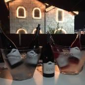 soito-wines-lda-dao
