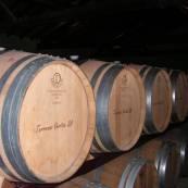vinhos-folha-do-meio-alentejo