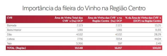 importancia-da-fileira-do-vinho-na-regiao-centro