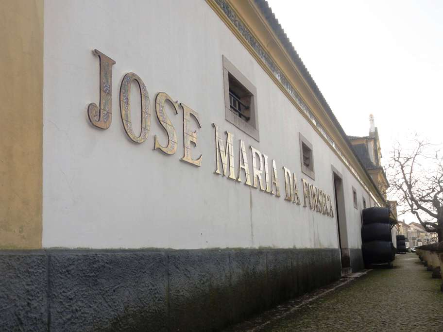 jose-maria-da-fonseca-7