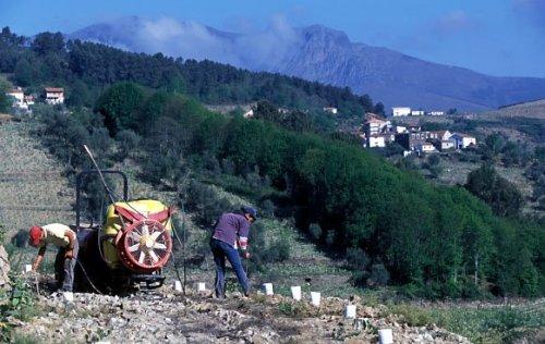 mor-valley-9