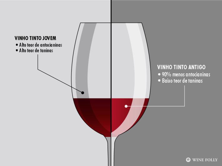 FONTE: Wine Folly