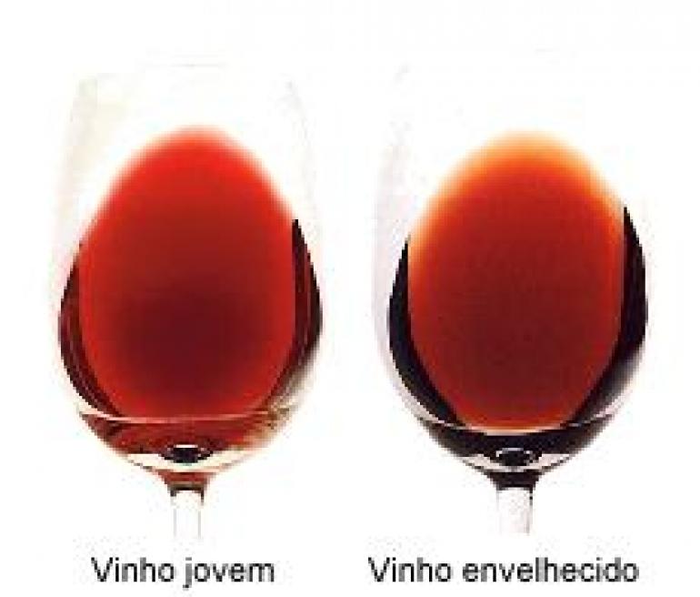 POLIFENÓIS DOS VINHOS TINTOS – Evolução da cor do vinho tinto